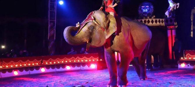 Историја Московског циркуса